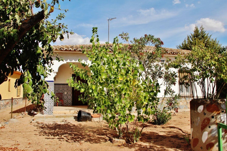 Rústico en venta, Azafran, Villafranca de los Caballeros
